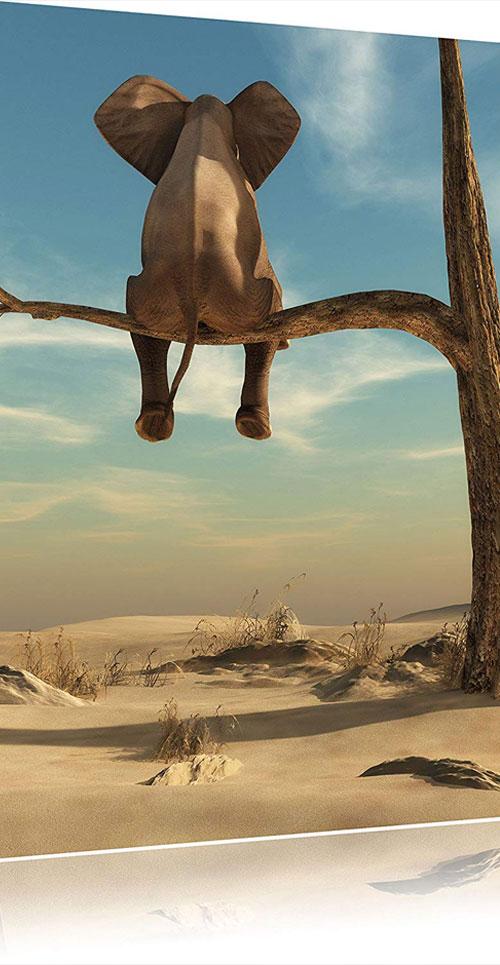 toile-elephant-desert-2