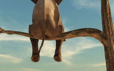 Tableau d'éléphant assis sur une branche dans le désert